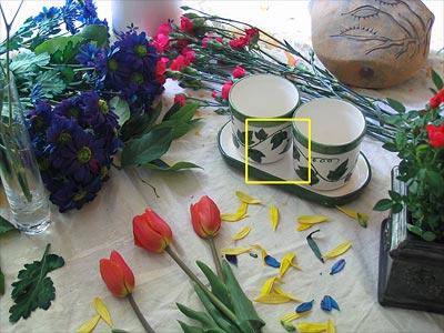 حساسیت (ISO) و نویز در عکاسی دیجیتال
