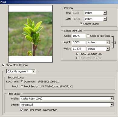 مدیریت رنگ در چاپ عکسهای دیجیتال