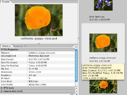XMP و نقش آن در روندکاری تصویربرداری دیجیتال: قسمت دوم