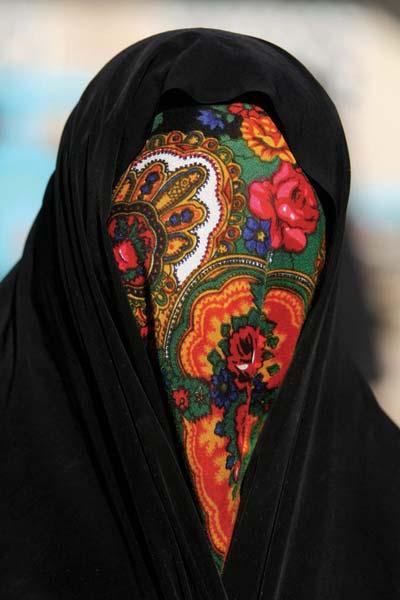 قادر عاقلی – عکس ۲