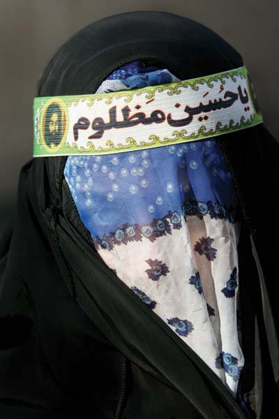 قادر عاقلی – عکس ۶