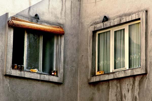 ۲.دو پنجره