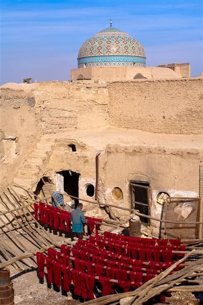 علیرضا فیروزی