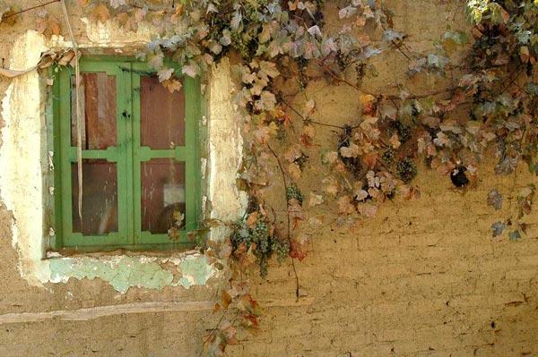 کاوه بغدادچی – عکس ۲