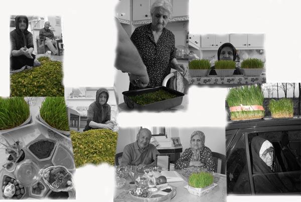 سحر مختاری وایقان، سبزی عید، عکس سوم