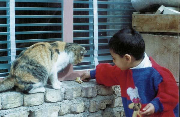 سلمان رهنما فلاورجان، ۹ساله، بفرما غذا، فلاورجان