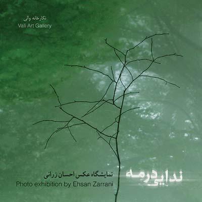 نمایشگاه عکس احسان رزانی در گالری والی
