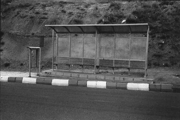 کیوان موسوی – عکس ۱۲