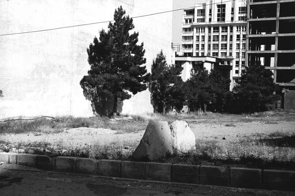 کیوان موسوی – عکس ۱۴