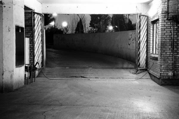 علی نادر محمدی – عکس ۱۰