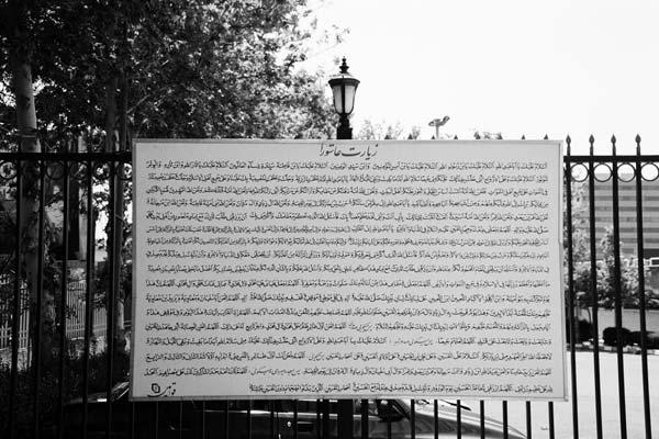 علی نادر محمدی – عکس ۳