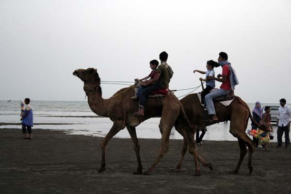 امیرحسین حیدری – شتر سواری در سواحل خلیج فارس – عکس ۱