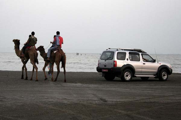امیرحسین حیدری – شتر سواری در سواحل خلیج فارس – عکس ۲