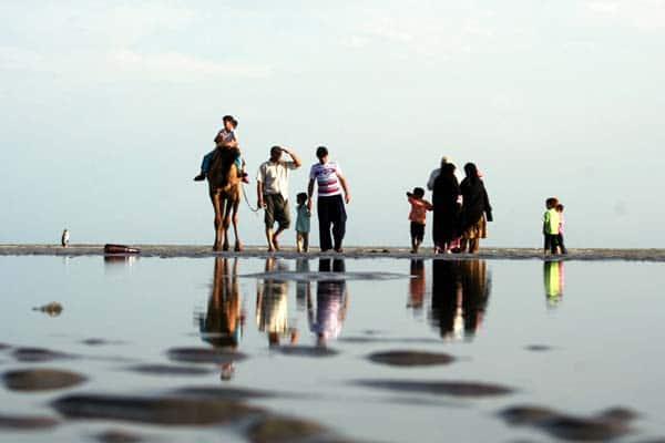 امیرحسین حیدری – شتر سواری در سواحل خلیج فارس – عکس ۳