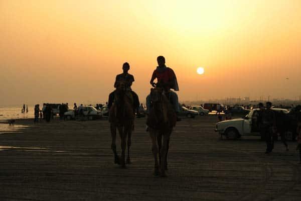 امیرحسین حیدری – شتر سواری در سواحل خلیج فارس – عکس ۷