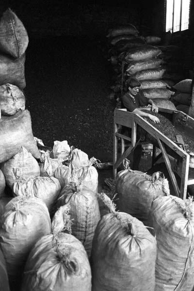 ذغال فروشان – عکاسی آنالوگ – ۶۰×۴۰ سانتیمتر – ۱۳۷۹ – عکس ۳