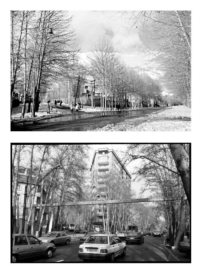 از مجموعه تجربه دوباره نگریستن . خیابان ولیعصر، سه راه زعفرانیه،  عکاسی آنالوگ . ۳۰×۲۰ سانتیمتر . ۱۳۸۴