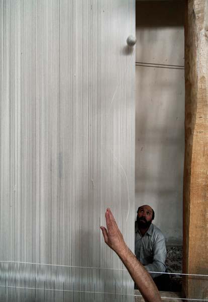 ساسان فهیمی – عکس ۱