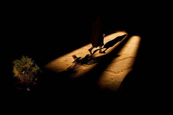 فرزاد آریان نژاد – عکس ۸