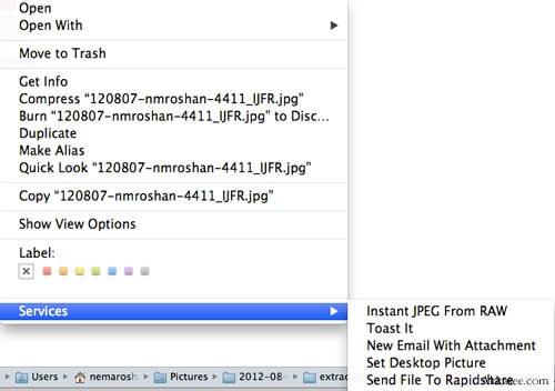 استخراج فوری JPEG درونی RAW
