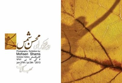 نمایشگاه عکس محسن شمس در گالری گلستان