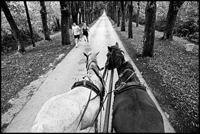 برپایی سه دوره آموزش عکاسی توسط محسن راستانی