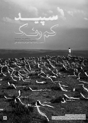 نمایشگاه گروهی عکس «سپید کمرنگ» در مشهد