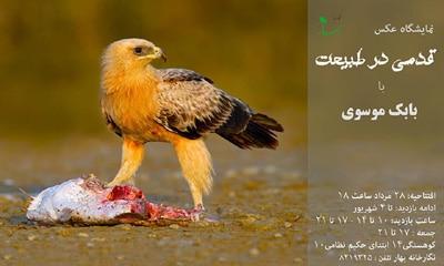 نمایشگاه عکس بابک موسوی در گالری بهار مشهد