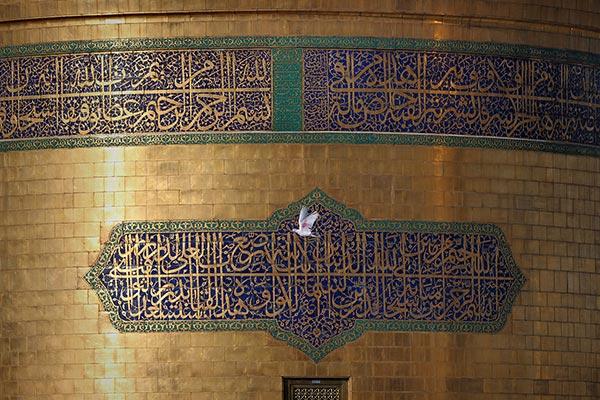 محمد جواد مشهدی