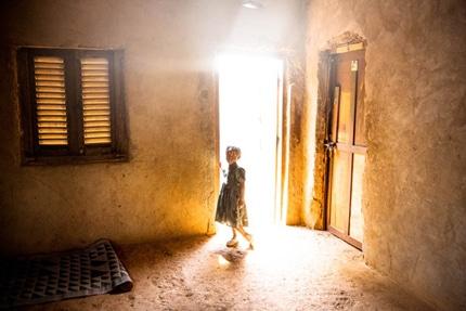 گرنت هترینگتون برای «ریشههای جنگ نامقدس آفریقا»