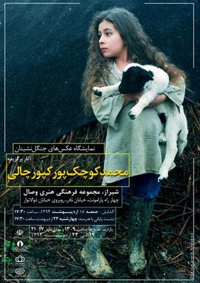 نمایشگاه عکس محمد کوچکپور کپورچالی در شیراز