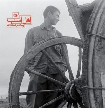 خرید اینترنتی کتاب عکس «اهل اسب» با تخفیف ویژه