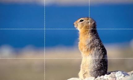 کارگاه عکاسی چشمانداز و طبیعت – قسمت پنجم