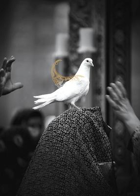 فراخوان سومین جشنواره سراسری عکس «خانه دوست»