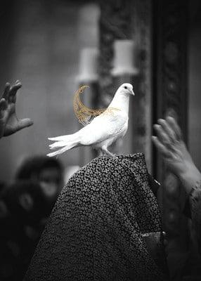 فراخوان اردوی سومین جشنواره عکس «خانه دوست»
