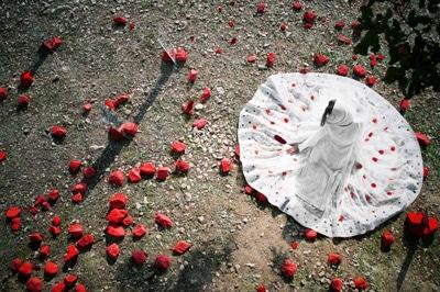 برپایی نمایشگاه عکس رضا میلانی در گالری سیحون