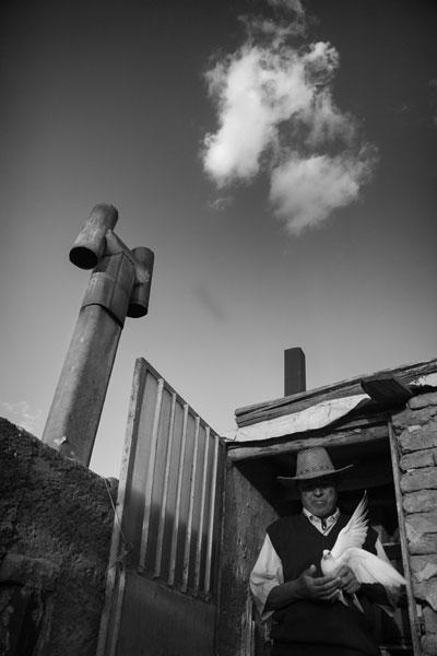 محمد بقال اصغری – عکس ۴