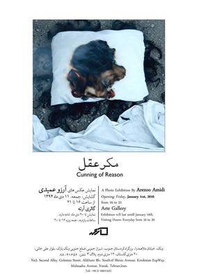 نمایشگاه عکسهای آرزو عمیدی در گالری آرته