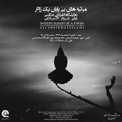 نمایشگاه عکس علی شیخ الاسلامی در تبریز