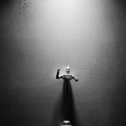 روایت یک زندگی در مجموعه عکس «رز سیاه» ترنت پارک