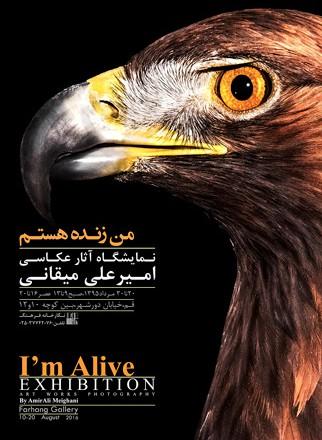 نمایشگاه انفرادی عکس «من زنده هستم» در قم