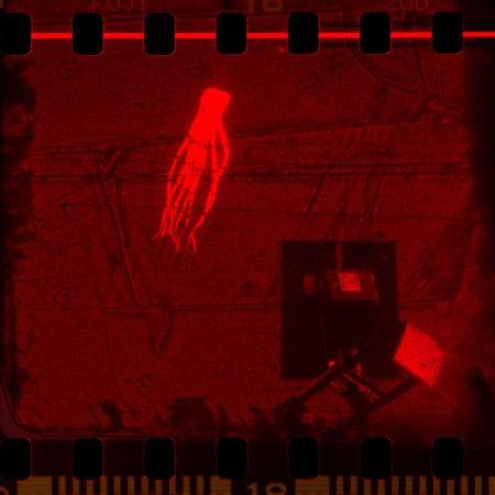 نمایشگاه عکس «انتقال به سرخ» در گالری اُ