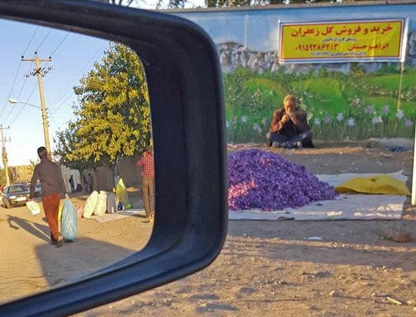 امید علیزاده – عکس ۴