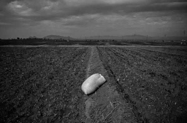 سهیل زند آذر – عکس ۲۲