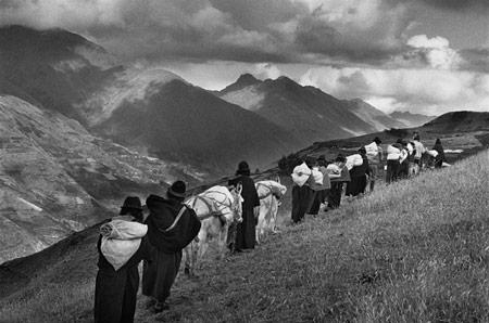 نگاهی به مجموعه عکسهای مهاجرتِ سباستیائو سالگادو