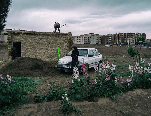 خشایار شریفایی – عکس ۱