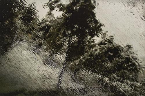«یک تکه زندگی»؛ یادبودی برای عباس کیارستمی