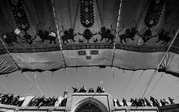 سید علی حسینی فر – عکس ۷