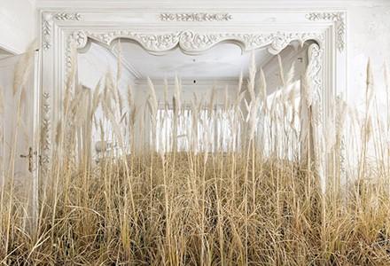 «خانه» نمایشگاهی از گوهر دشتی