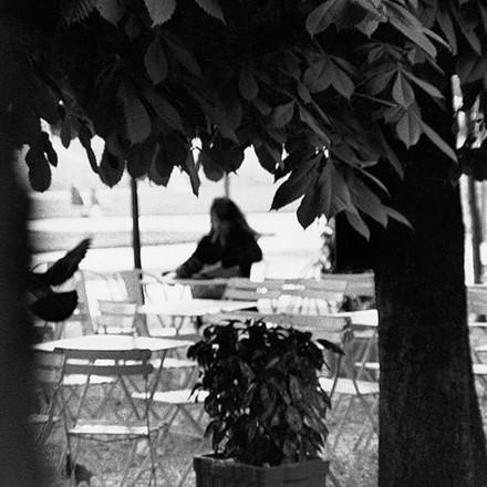 «من را ببین» به روایت سوفی کل